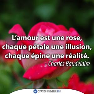 L'amour est une rose, chaque pétale une illusion, chaque épine une réalité
