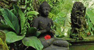 Statue de Bouddha zen